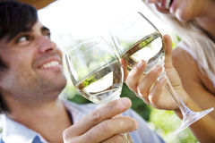 Wine in the garden Stock Images