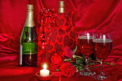 Wine in Gift Bag Stock Image