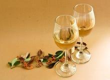 Wine glass. On autumn season Stock Images