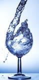 Wine glass Stock Image