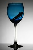 Wine glass. An isolated wine glass with turn over car inside-dont drink and drive message Stock Photos