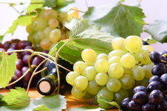 Wine in glass. And grape Royalty Free Stock Images