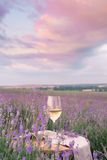 Wine glass against lavender Royalty Free Stock Images