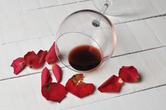 Wine glass and beautiful red rose isolated on white background. petals rose.Copy space. Gift romance day celebration love blossom nature valentine flower floral stock images