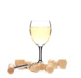 Wine glass composition. Stock Images