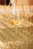 Wine glass. Royalty Free Stock Images