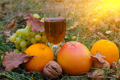 Wine glass and fruits. In a grass Stock Photography