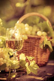 Wine glass and grapes of vine Stock Photo