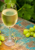 Wine glass with ice cold white wine, outdoor terrace, wine tasti Stock Images