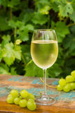 Wine glass with ice cold white wine, outdoor terrace, wine tasti Stock Photo