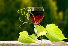 Wine glass with leaves Royalty Free Stock Photos