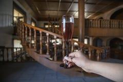 Wine glass point of view,vineyards queretaro Mexico cava stock photos