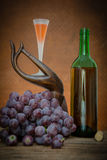 Wine glass and red grape Stock Photo