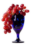 Wine glass with red grapes. A wine or juice concept isolated against white Stock Images