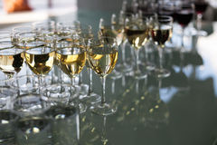 Wine by the glass. Red and white wine in glasses Stock Image