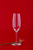 Wine glass with rose flower over red Royalty Free Stock Image
