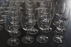 Wine glass in row Stock Images