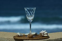 Wine Glass and sea shells Stock Photography