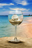 Wine glass, seashell and pearl. Wine glass on the beach, inside the seashell with a pearl Stock Images