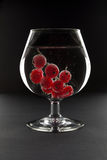 Wine glass with sparkling water and red currant Royalty Free Stock Photos