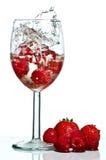 Wine Glass Splash Royalty Free Stock Photography
