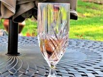 Wine Glass, Stemware, Champagne Stemware, Glass stock images