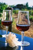 ~Wine Glasses. Australian Wines - the sun in the wine Royalty Free Stock Photos