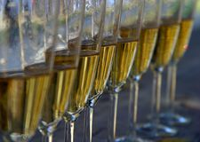 Wine-glasses. Glasses filled with champagne Royalty Free Stock Image