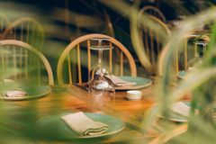 Wine glasses on the desk. royalty free stock images