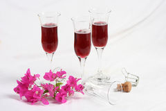 Wine Glasses with Flowers. Wineglasses, cork with a sprig and pink bougainvillea flowers on a white surface Stock Image