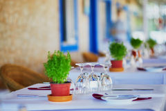 Wine glasses and green plant on the table of restaurant in Portugal Stock Photography