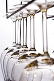 Wine glasses lined up. In bar Royalty Free Stock Image