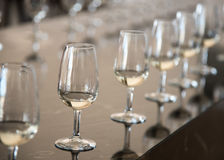 Wine glasses Royalty Free Stock Photos