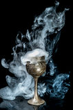 Wine goblet Royalty Free Stock Photos