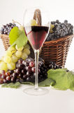 Wine. A good glass of wine with grape Stock Photography