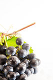 Wine. A good glass of wine with grape Royalty Free Stock Images