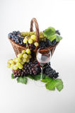 Wine. A good glass of wine with grape Royalty Free Stock Photo