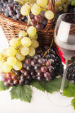 Wine. A good glass of wine with grape Stock Images