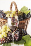 Wine. A good glass of wine with grape Royalty Free Stock Image