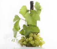 Wine and grape Stock Photos