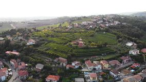 Wine grape aerial nature sun. Aerial flight over Italian town country village nature grape wine stock video
