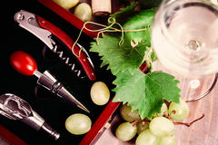Wine, Grape, Grapevine and Corkscrew. On Background Royalty Free Stock Images