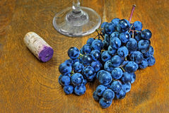 Wine Grape Still Life Stock Image