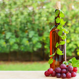 Wine, grape and vineyard Royalty Free Stock Photos