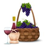 Wine grape and wine basket Royalty Free Stock Photos