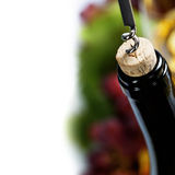 Wine and grape Royalty Free Stock Images