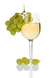 Wine and grapes. Wine in a glass with grapes, isolated on a white background Stock Photography