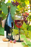 Wine and grapes. Red wine glass on a wooden table against a grapevine and wasp Royalty Free Stock Photos