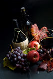 Wine and Grapes Royalty Free Stock Photography