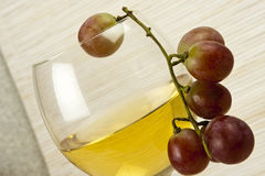 Wine with grapes. White wine in a glass with grapes Royalty Free Stock Photos